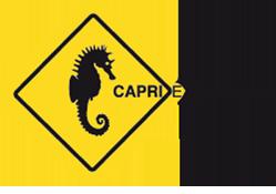 CAPRIEXCURSIONS